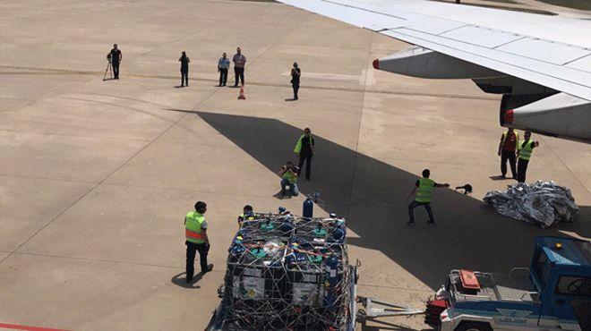 Türkiye'den Arap ülkelerine uçakla yavru balık gidiyor